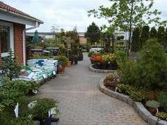 Esbjerg planteskole